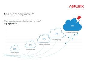 Obawy związane z bezpieczeństwem chmury - źródło NetWrix